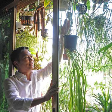 Hanging Plants @ Bishan Blk 140
